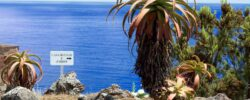 Potovanje na Azore