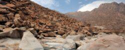 Cape Cross Namibija